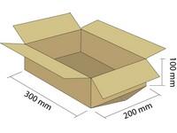 Karton klapowy 3W 300x200x100 mm