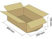 Karton klapowy 3W 300x200x150mm