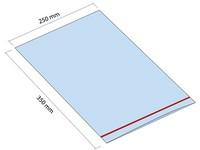 Woreczek strunowy ZIP 250x350 mm